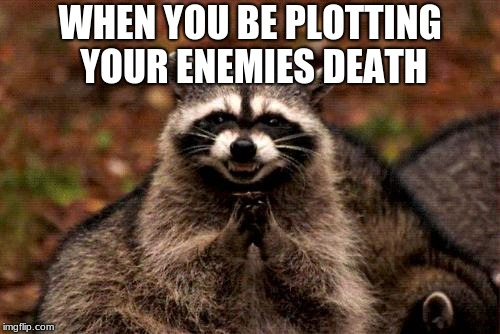 Evil Plotting Raccoon Meme | WHEN YOU BE PLOTTING YOUR ENEMIES DEATH | image tagged in memes,evil plotting raccoon | made w/ Imgflip meme maker
