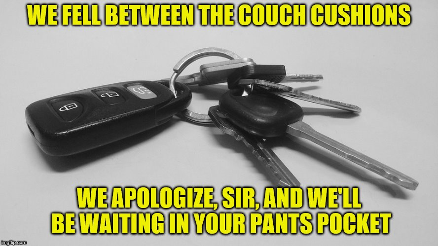 WE FELL BETWEEN THE COUCH CUSHIONS WE APOLOGIZE, SIR, AND WE'LL BE WAITING IN YOUR PANTS POCKET | made w/ Imgflip meme maker