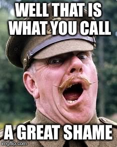 windsor davies | WELL THAT IS WHAT YOU CALL A GREAT SHAME | image tagged in windsor davies | made w/ Imgflip meme maker