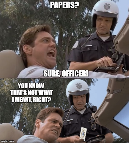 Rolling, Code 3 |  PAPERS? SURE, OFFICER! YOU KNOW THAT'S NOT WHAT I MEANT, RIGHT? | image tagged in pulled over,traffic stop,cop,papers | made w/ Imgflip meme maker
