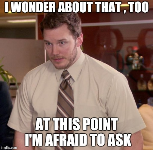 Afraid To Ask Andy Meme | I WONDER ABOUT THAT , TOO AT THIS POINT I'M AFRAID TO ASK | image tagged in memes,afraid to ask andy | made w/ Imgflip meme maker