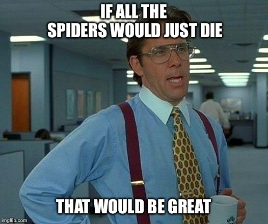 That Would Be Great | IF ALL THE SPIDERS WOULD JUST DIE THAT WOULD BE GREAT | image tagged in memes,that would be great | made w/ Imgflip meme maker