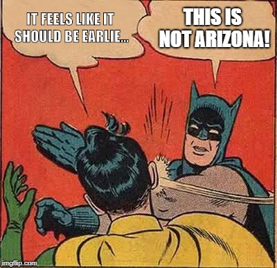 WE WILL, WE WILL CLOCK YOU | IT FEELS LIKE IT SHOULD BE EARLIE... THIS IS NOT ARIZONA! | image tagged in batman slapping robin,daylight savings time,ridiculous,clock | made w/ Imgflip meme maker