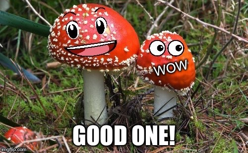 WoW Shroom Upvote | GOOD ONE! | image tagged in wow shroom upvote | made w/ Imgflip meme maker