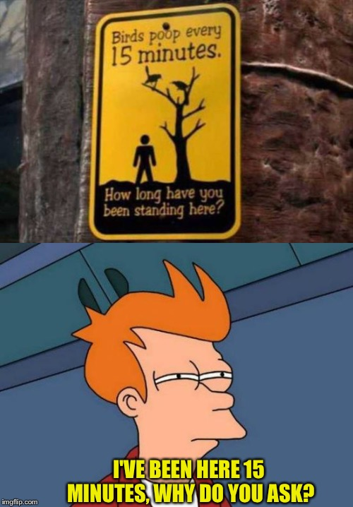 Wow, that's pretty regular. | I'VE BEEN HERE 15 MINUTES, WHY DO YOU ASK? | image tagged in futurama fry,birds,poop,memes,funny | made w/ Imgflip meme maker