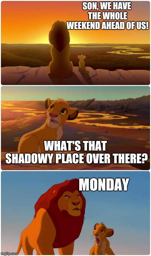 Lion King Meme | SON, WE HAVE THE WHOLE WEEKEND AHEAD OF US! WHAT'S THAT SHADOWY PLACE OVER THERE? MONDAY | image tagged in lion king meme | made w/ Imgflip meme maker