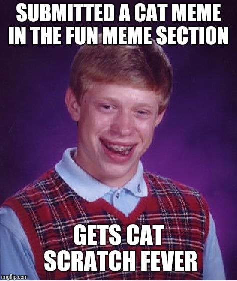 Bad Luck Brian Meme | SUBMITTED A CAT MEME IN THE FUN MEME SECTION GETS CAT SCRATCH FEVER | image tagged in memes,bad luck brian | made w/ Imgflip meme maker