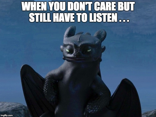 WHEN YOU DON'T CARE BUT STILL HAVE TO LISTEN . . . | image tagged in how to train your dragon,toothless | made w/ Imgflip meme maker
