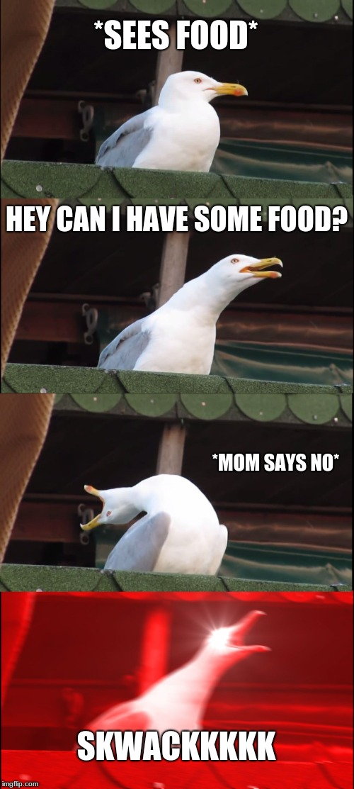 Inhaling Seagull Meme | *SEES FOOD* HEY CAN I HAVE SOME FOOD? *MOM SAYS NO* SKWACKKKKK | image tagged in memes,inhaling seagull | made w/ Imgflip meme maker