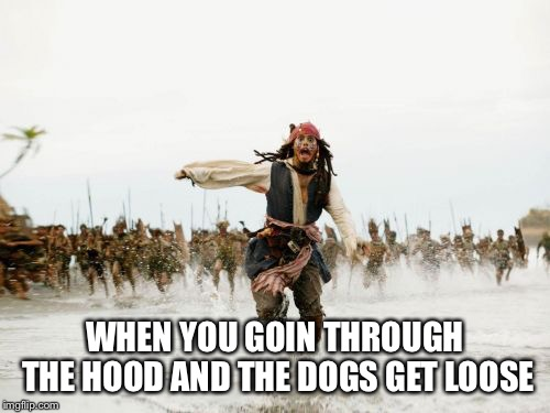 Jack Sparrow Being Chased Meme | WHEN YOU GOIN THROUGH THE HOOD AND THE DOGS GET LOOSE | image tagged in memes,jack sparrow being chased | made w/ Imgflip meme maker