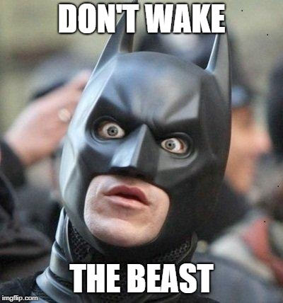 Shocked Batman | DON'T WAKE THE BEAST | image tagged in shocked batman | made w/ Imgflip meme maker