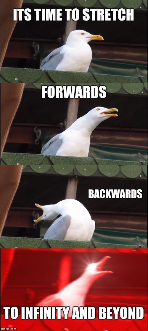 Inhaling Seagull Meme | ITS TIME TO STRETCH FORWARDS BACKWARDS TO INFINITY AND BEYOND | image tagged in memes,inhaling seagull | made w/ Imgflip meme maker