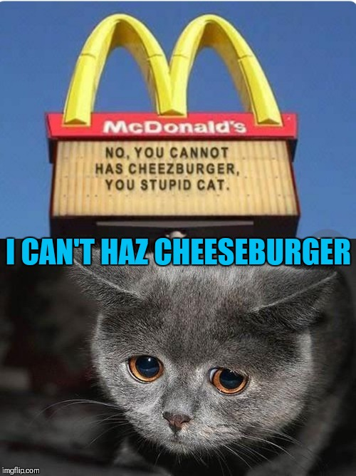 I can has cheeseburger | I CAN'T HAZ CHEESEBURGER | image tagged in memes,i can has cheezburger cat,funny,mcdonalds | made w/ Imgflip meme maker