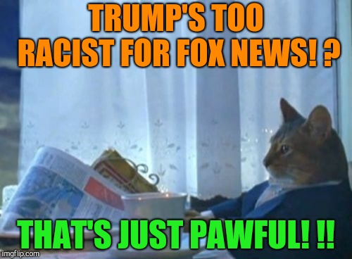 How pawful!  |  TRUMP'S TOO RACIST FOR FOX NEWS! ? THAT'S JUST PAWFUL! !! | image tagged in memes,i should buy a boat cat,donald trump,racism,republicans,white supremacists | made w/ Imgflip meme maker