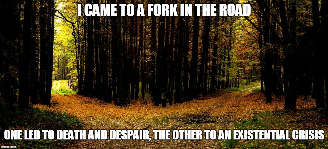 I CAME TO A FORK IN THE ROAD ONE LED TO DEATH AND DESPAIR, THE OTHER TO AN EXISTENTIAL CRISIS | made w/ Imgflip meme maker