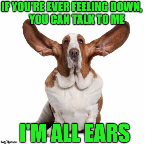 I'm EAR For You Man!!! | IF YOU'RE EVER FEELING DOWN,             YOU CAN TALK TO ME I'M ALL EARS | image tagged in basset hound,memes,talk,all,big ears,friend | made w/ Imgflip meme maker