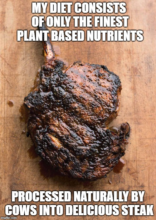 Naturally processed vegetable diet | MY DIET CONSISTS OF ONLY THE FINEST PLANT BASED NUTRIENTS PROCESSED NATURALLY BY COWS INTO DELICIOUS STEAK | image tagged in vegetarian,vegan,steak | made w/ Imgflip meme maker