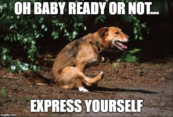 So that's what the song means | OH BABY READY OR NOT... EXPRESS YOURSELF | image tagged in madonna | made w/ Imgflip meme maker