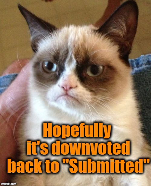 "Grumpy Cat Meme | Hopefully it's downvoted back to ""Submitted"" 