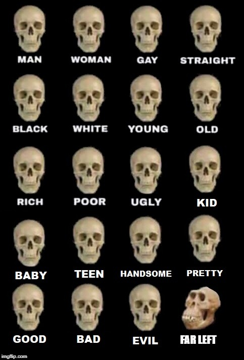 FAR LEFT | image tagged in idiot skull extended | made w/ Imgflip meme maker