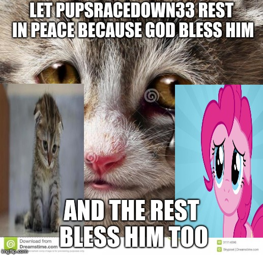 Rest in peace PupsRaceDown33 | LET PUPSRACEDOWN33 REST IN PEACE BECAUSE GOD BLESS HIM AND THE REST BLESS HIM TOO | image tagged in rest in peace m8 ghoster,pupsracedown33 | made w/ Imgflip meme maker