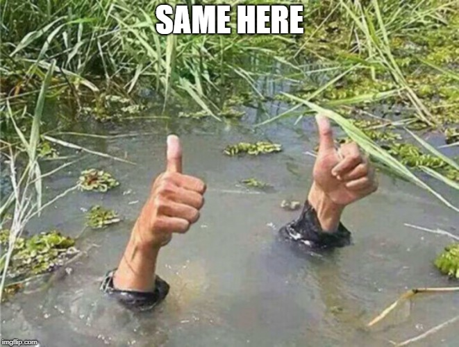 Drowning Thumbs Up | SAME HERE | image tagged in drowning thumbs up | made w/ Imgflip meme maker