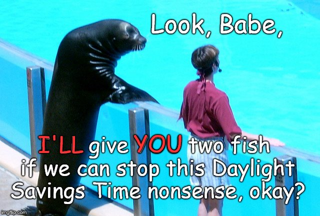I can't believe we're still struggling with DST but can you imaging trying to 'splain it to a Sealion? | Look, Babe, I'LL give YOU two fish if we can stop this Daylight Savings Time nonsense, okay? I'LL YOU | image tagged in seal gets the girl,daylight savings time,doesn't work for me,or sealions,or seals for that matter,douglie | made w/ Imgflip meme maker