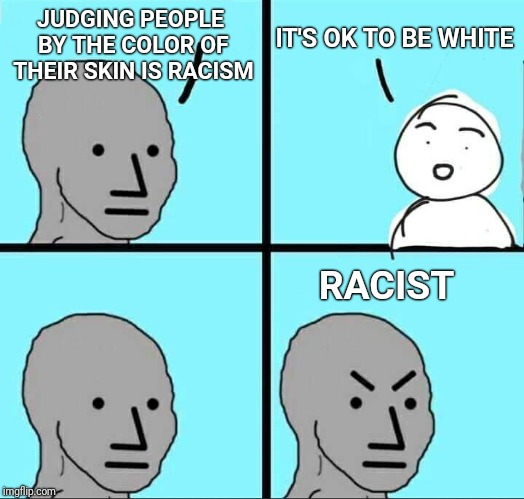 NPC Logic | JUDGING PEOPLE BY THE COLOR OF THEIR SKIN IS RACISM IT'S OK TO BE WHITE RACIST | image tagged in npc meme,white,race,racism | made w/ Imgflip meme maker