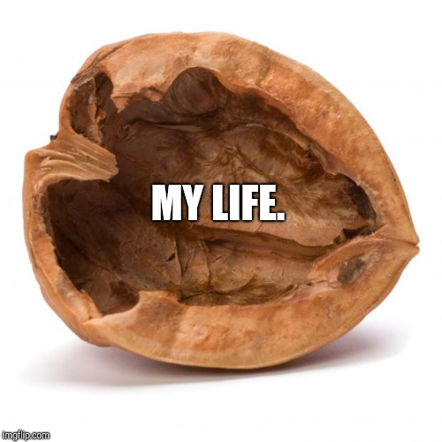 My life in a nutshell. | MY LIFE. | image tagged in nutshell,my life | made w/ Imgflip meme maker