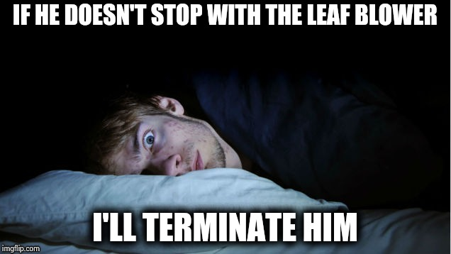 Night Terror | IF HE DOESN'T STOP WITH THE LEAF BLOWER I'LL TERMINATE HIM | image tagged in night terror | made w/ Imgflip meme maker