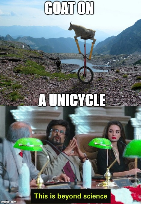 How did they do this? | GOAT ON A UNICYCLE | image tagged in science | made w/ Imgflip meme maker