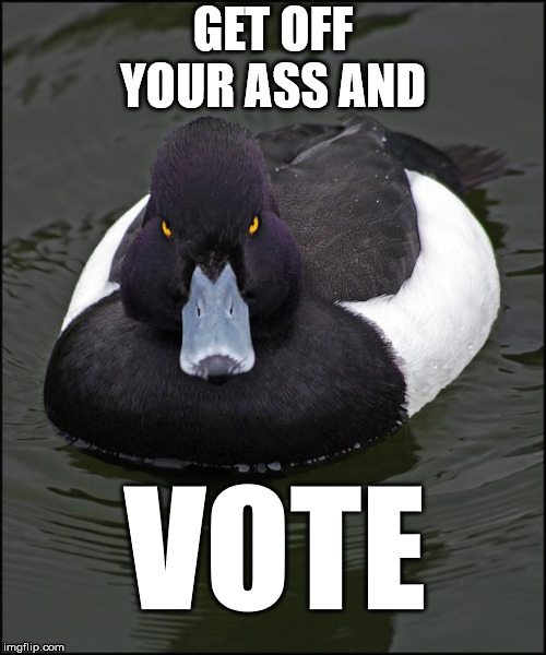 Angry duck | GET OFF YOUR ASS AND VOTE | image tagged in angry duck,AdviceAnimals | made w/ Imgflip meme maker