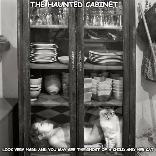 Not everyone can see this! | THE HAUNTED CABINET LOOK VERY HARD AND YOU MAY SEE THE GHOST OF A CHILD AND HER CAT | image tagged in ghost,haunted | made w/ Imgflip meme maker