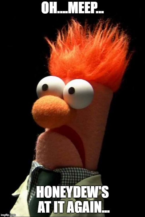 Beaker meep | OH....MEEP... HONEYDEW'S AT IT AGAIN... | image tagged in beaker meep | made w/ Imgflip meme maker