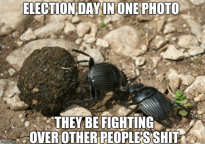 The next election  | ELECTION DAY IN ONE PHOTO THEY BE FIGHTING OVER OTHER PEOPLE'S SHIT | image tagged in the next election | made w/ Imgflip meme maker