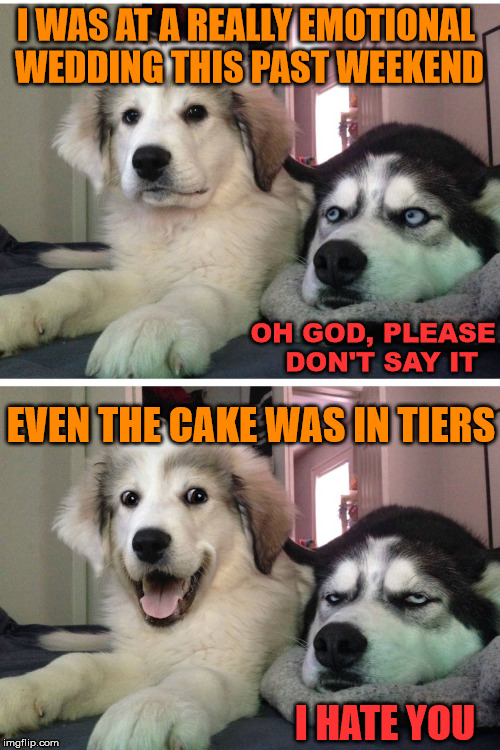 We all had a good time. | I WAS AT A REALLY EMOTIONAL WEDDING THIS PAST WEEKEND EVEN THE CAKE WAS IN TIERS OH GOD, PLEASE  DON'T SAY IT I HATE YOU | image tagged in bad pun dogs,wedding,you don't say,funny,funny dog,hilarious | made w/ Imgflip meme maker