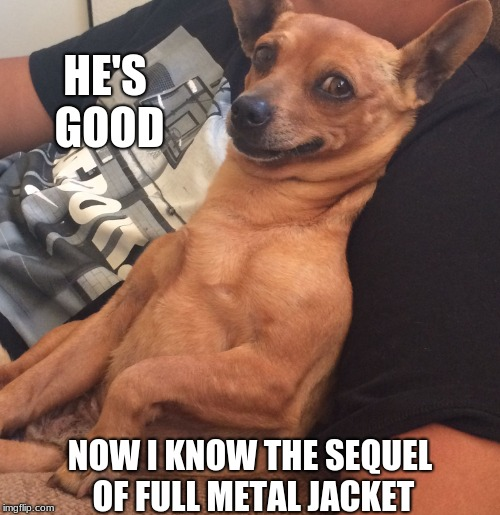 Max the Sarcastic Dog | HE'S GOOD NOW I KNOW THE SEQUEL OF FULL METAL JACKET | image tagged in max the sarcastic dog | made w/ Imgflip meme maker