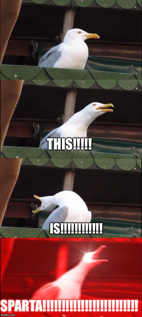 Inhaling Seagull Meme | THIS!!!!! SPARTA!!!!!!!!!!!!!!!!!!!!!!!!! IS!!!!!!!!!!!! | image tagged in memes,inhaling seagull | made w/ Imgflip meme maker