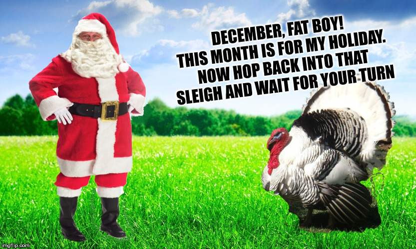 DECEMBER, FAT BOY! THIS MONTH IS FOR MY HOLIDAY. NOW HOP BACK INTO THAT SLEIGH AND WAIT FOR YOUR TURN | image tagged in santa turkey | made w/ Imgflip meme maker