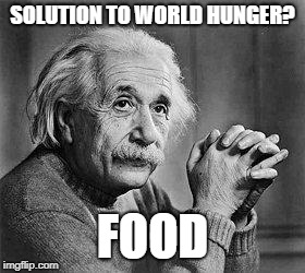 Wow what a genius |  SOLUTION TO WORLD HUNGER? FOOD | image tagged in albert einstein,world hunger,genius,dank memes,food,solution | made w/ Imgflip meme maker