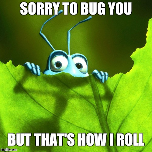 Don't be a bug | SORRY TO BUG YOU BUT THAT'S HOW I ROLL | image tagged in bug | made w/ Imgflip meme maker