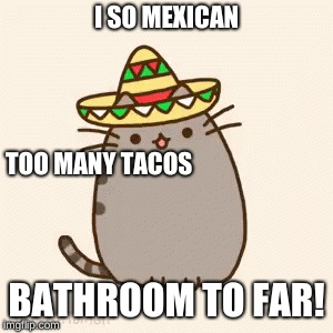 I SO MEXICAN BATHROOM TO FAR! TOO MANY TACOS | image tagged in memes,mexican,farts | made w/ Imgflip meme maker