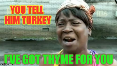 Aint Nobody Got Time For That Meme | YOU TELL HIM TURKEY I'VE GOT THYME FOR YOU | image tagged in memes,aint nobody got time for that | made w/ Imgflip meme maker