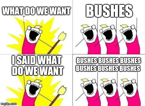 WE WANT BUSHES | WHAT DO WE WANT BUSHES I SAID WHAT DO WE WANT BUSHES BUSHES BUSHES BUSHES BUSHES BUSHES | image tagged in memes,what do we want | made w/ Imgflip meme maker