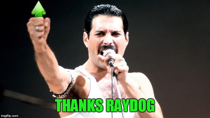 THANKS RAYDOG | made w/ Imgflip meme maker