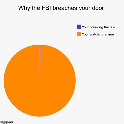 Why the FBI breaches your door | Your watching anime , Your breaking the law | image tagged in funny,pie charts | made w/ Imgflip chart maker