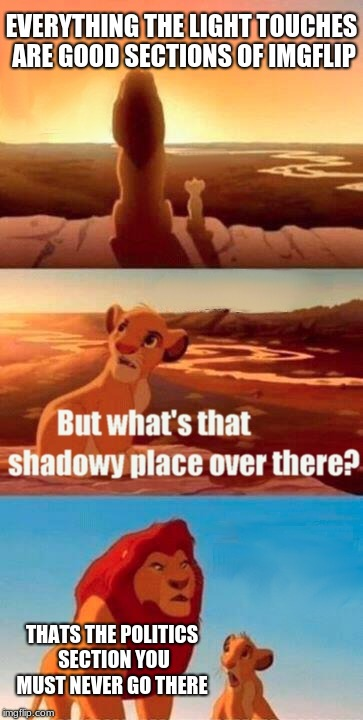 Simba Shadowy Place | EVERYTHING THE LIGHT TOUCHES ARE GOOD SECTIONS OF IMGFLIP THATS THE POLITICS SECTION YOU MUST NEVER GO THERE | image tagged in memes,simba shadowy place,lion king,imgflip | made w/ Imgflip meme maker