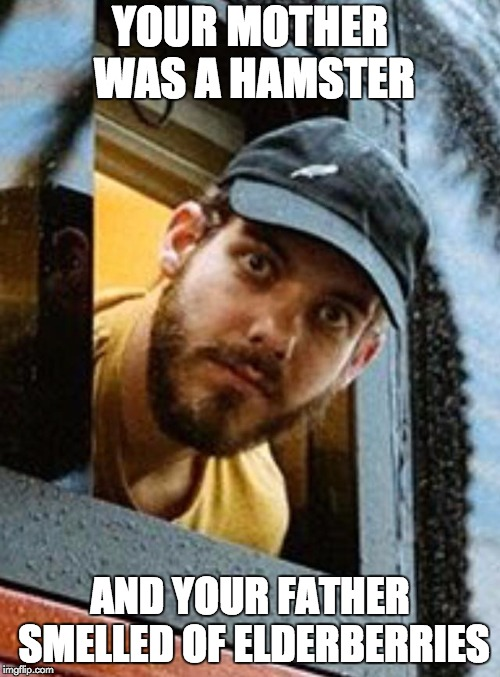 YOUR MOTHER WAS A HAMSTER AND YOUR FATHER SMELLED OF ELDERBERRIES | image tagged in san holo,monty python and the holy grail | made w/ Imgflip meme maker