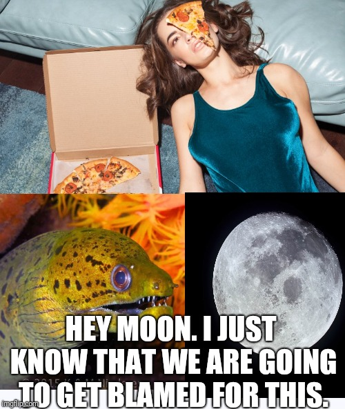 Moon, Eye, Pizza, A Moray... Book'em Dan-O |  HEY MOON. I JUST KNOW THAT WE ARE GOING TO GET BLAMED FOR THIS. | image tagged in moon,song lyrics,eye,pizza,wrong lyrics,eel | made w/ Imgflip meme maker