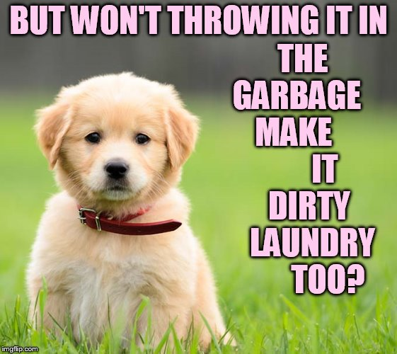 BUT WON'T THROWING IT IN THE GARBAGE    MAKE           IT   DIRTY    LAUNDRY        TOO? | made w/ Imgflip meme maker